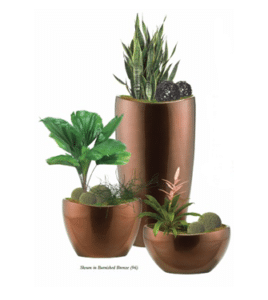 Indoor Plant Rental and Maintenance Cost Savings