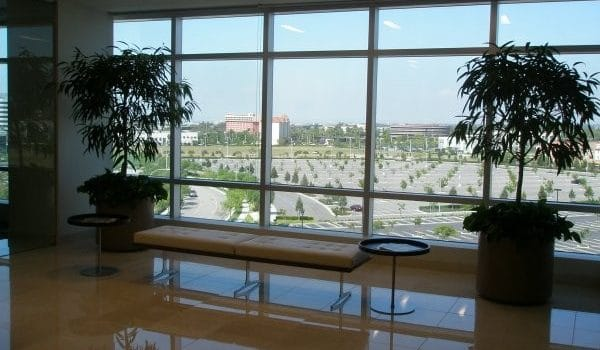 Indian Wells Indoor Plant Installation and Maintenance