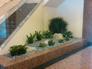 Indoor Plant Rental Brea California building lobby