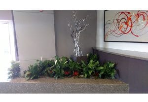 Indoor Plant Rental Palm Springs building lobby