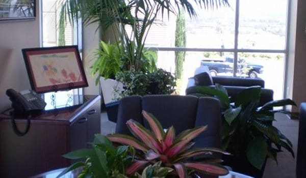 La Quinta CA Indoor Plant Installation and Maintenance