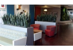 Moreno Valley Indoor Plant Rental in building lobby