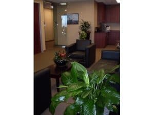 Commercial Indoor Plant Rental in Palm Desert