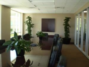Commercial Indoor Plant Rental Temecula California