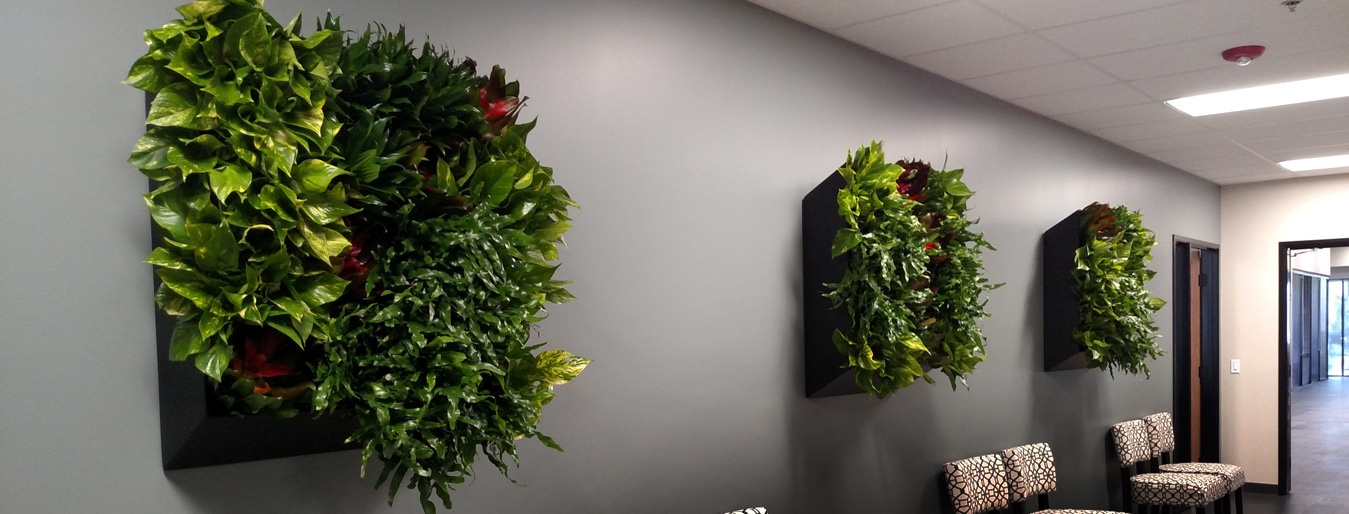 Living Walls in Southern California