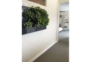 Living Walls Provide Interior Office Design