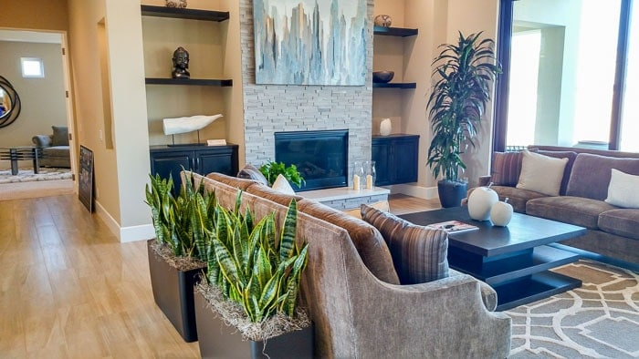 Residential Plant Rentals And Maintenance Home Interiors Landscaping