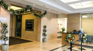 Holiday Decor with Indoor Plants for Riverside County and San Bernardino County Offices and Homes