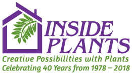 Inside Plants Logo, an indoor plant company