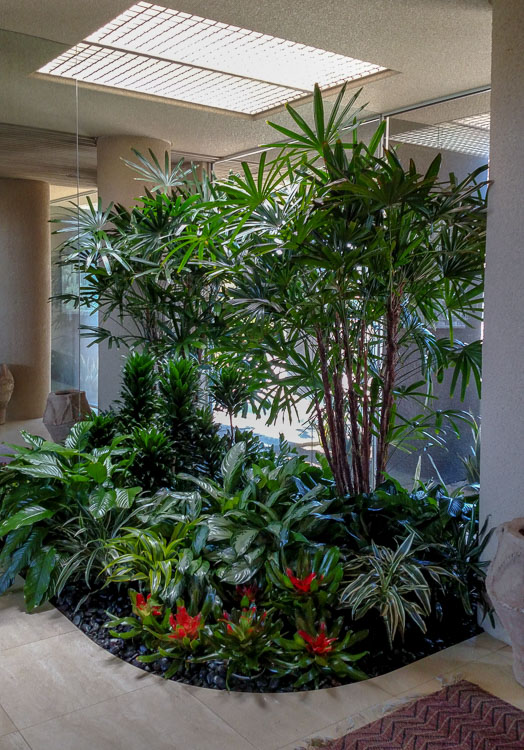 Indoor-plant care for interior plant design in businesses and homes - Southern California