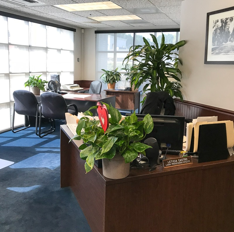 Indoor Plant for business at Tustin Community Bank by Inside Plants Inc.
