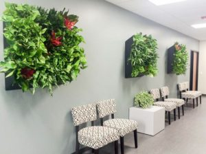 Desert Hot Springs, CA Indoor Plant Service Reduce Noise with Plant Walls