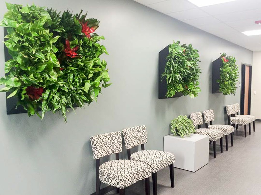 Indoor Plants Reduce Noise living green wall