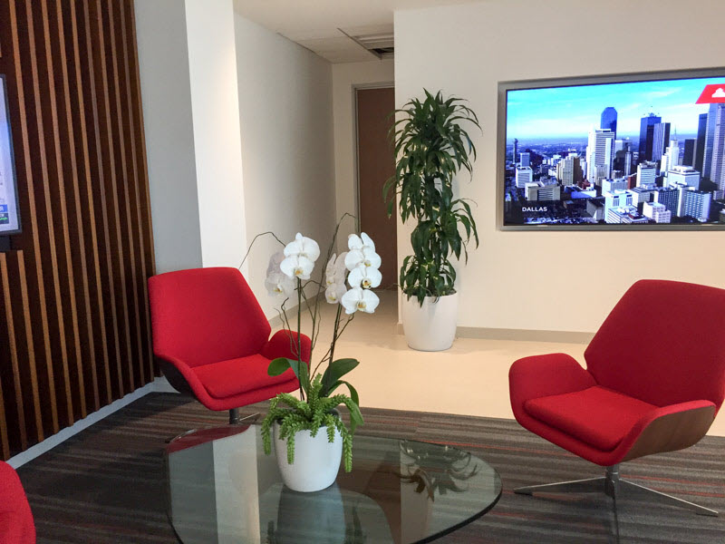Indoor Plants Reduce Noise waiting room