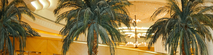 What Is An Indoor Plant Service?