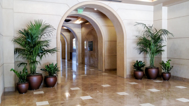 Biophilic Design Benefits Commercial Indoor Plant Maintenance Southern California