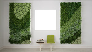 Riverside County Commercial Indoor Plant Service Moss Walls and Plant Walls Reduce Noise