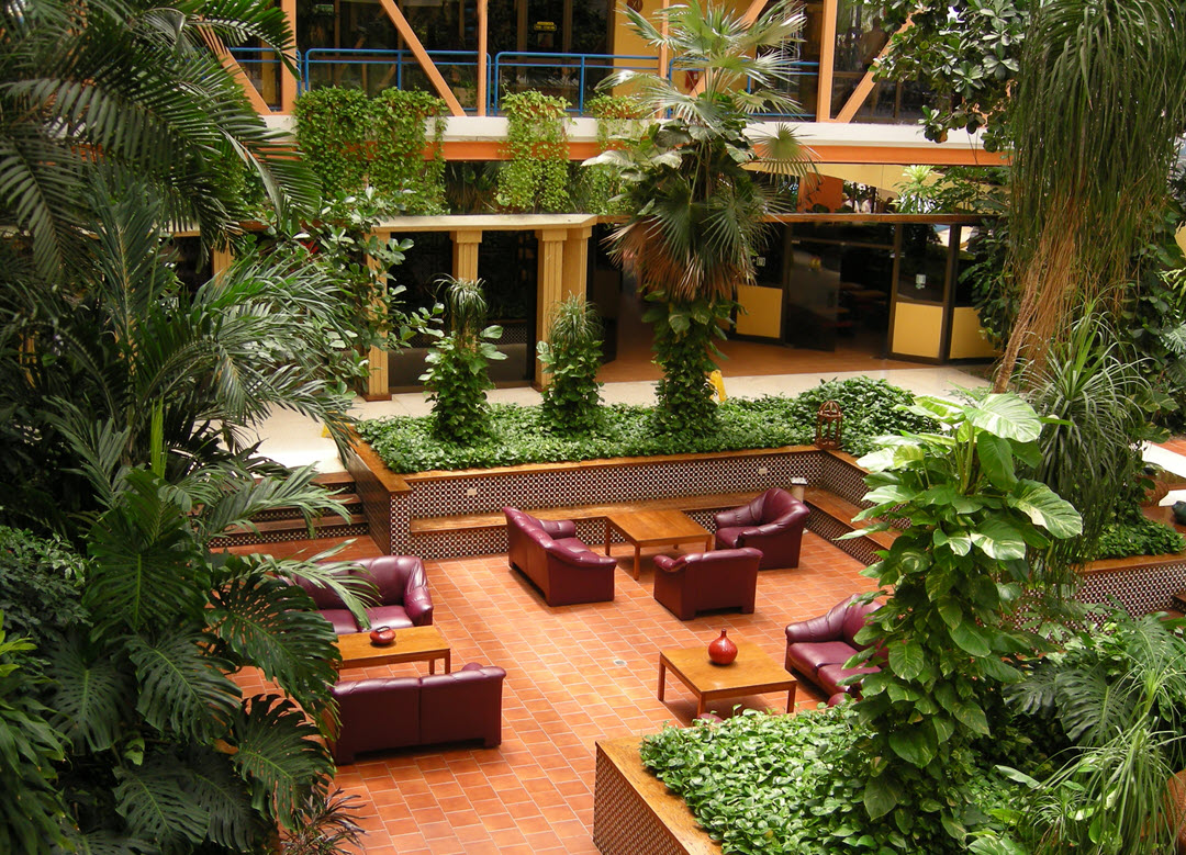 Lobby Plant Benefits Space