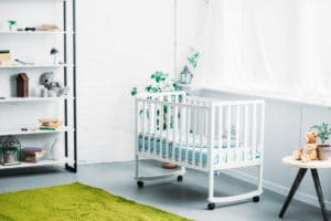 Home Plant Service for Baby Room in Riverside County or Riverside County