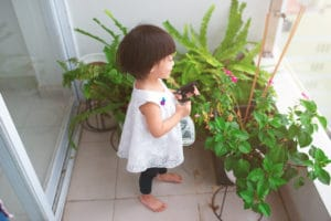 Children in the Home Need Indoor Plants to Clean the Air and Promote a Healthy Lifestyle