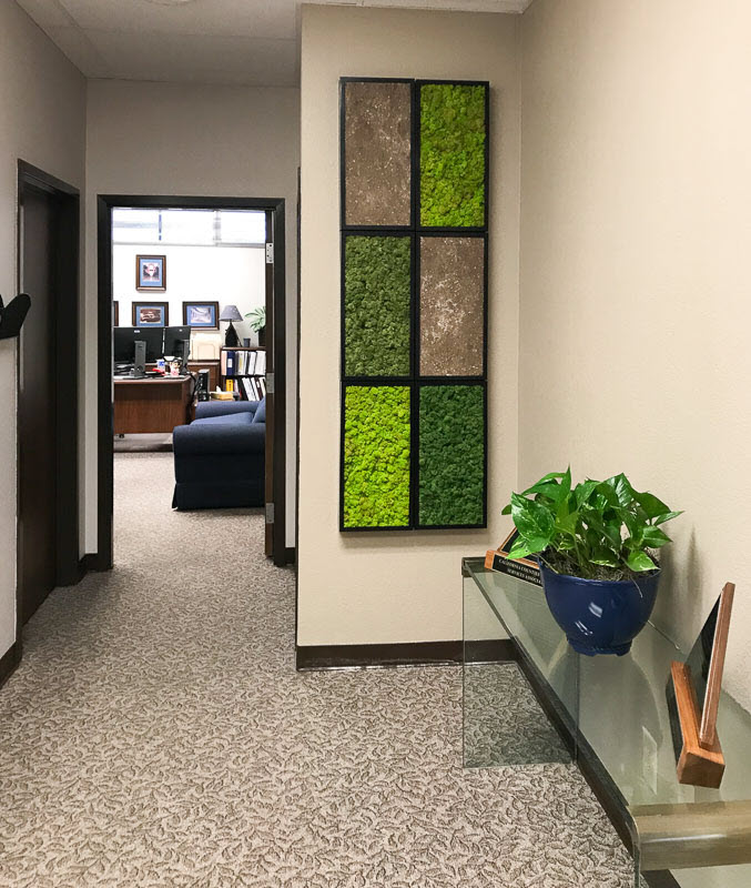 about moss walls benefits