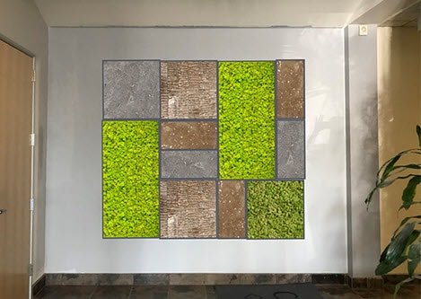 About Moss Walls