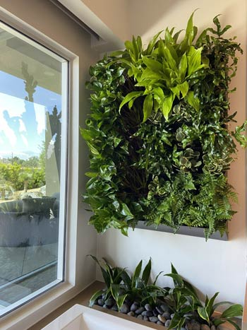 Riverside County and San Bernardino County Plant Wall in a Home